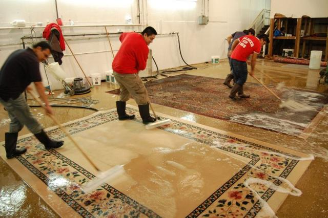 Wash carpets and rugs