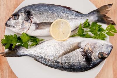 fish odors