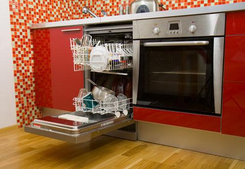 Ants-Dishwasher
