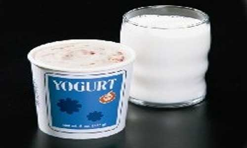 Yogurt and milk