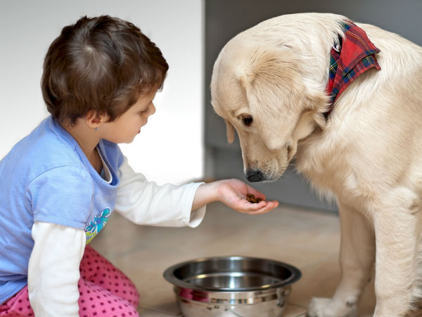 pet care with kids