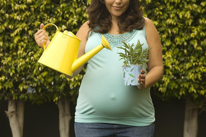 Gardening During Pregnanc