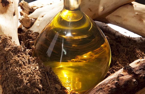 Sandalwood Oil
