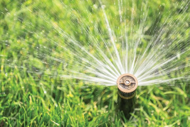 Use low-profile sprinklers to save water. Better yet, tear up the lawn, replace it with drought-tolerant plants and water using drip irrigation systems.